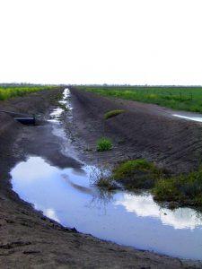 run-dry-1312604